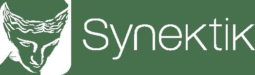 Synektik.pl